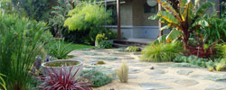 landscape design and installation
